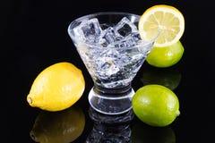 Λαμπιρίζοντας ποτό σε ένα martini γυαλί με τα λεμόνια και τους ασβέστες Στοκ Εικόνα