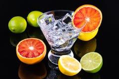 Λαμπιρίζοντας ποτό σε ένα martini γυαλί με τα ζωηρόχρωμα εσπεριδοειδή Στοκ Φωτογραφία