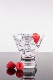 Λαμπιρίζοντας ποτό σε ένα martini γυαλί με τα σμέουρα Στοκ Φωτογραφίες