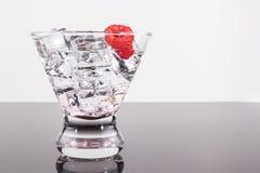 Λαμπιρίζοντας ποτό σε ένα martini γυαλί με το σμέουρο Στοκ Εικόνες