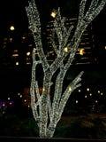 Λαμπρά αναμμένο δέντρο στη νύχτα της Παραμονής Χριστουγέννων Στοκ Εικόνα