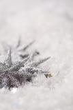 λαμπρά αστέρια Στοκ εικόνα με δικαίωμα ελεύθερης χρήσης