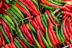 λαμπρά χρωματισμένα πιπέρια Στοκ φωτογραφία με δικαίωμα ελεύθερης χρήσης