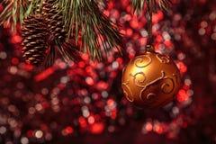 Λαμπρή ένωση σφαιρών Χριστουγέννων χρυσή στους κλάδους πεύκων με το εορταστικό κόκκινο υπόβαθρο Στοκ Εικόνες