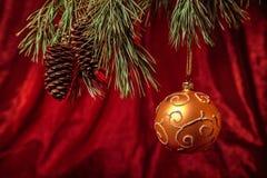 Λαμπρή ένωση σφαιρών Χριστουγέννων χρυσή στους κλάδους πεύκων Στοκ φωτογραφίες με δικαίωμα ελεύθερης χρήσης