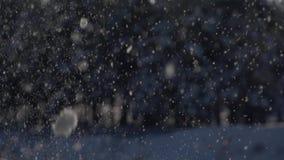 Λαμπρή snowflakes πτώση στο δασικό υπόβαθρο Μήκος σε πόδηα αργός-Mo απόθεμα βίντεο
