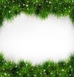 Λαμπροί πράσινοι κλάδοι πεύκων χριστουγεννιάτικων δέντρων όπως το πλαίσιο Στοκ Εικόνες