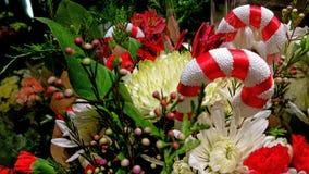 Λαμπρότητα Yuletide! Μούρα, floral & κάλαμοι καραμελών στοκ φωτογραφία