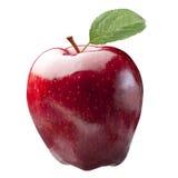 Λαμπρό κόκκινο φύλλο της Apple που απομονώνεται Στοκ φωτογραφίες με δικαίωμα ελεύθερης χρήσης