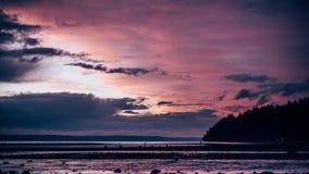 Λαμπρό πορφυρό και μπλε ηλιοβασίλεμα πέρα από τον ήχο Puget φιλμ μικρού μήκους