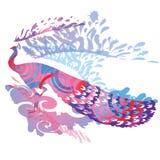 Λαμπρό peacock Στοκ Εικόνα