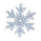 λαμπρό snowflake Στοκ εικόνες με δικαίωμα ελεύθερης χρήσης