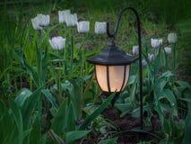 Λαμπτήρας κήπων ηλιακός που τροφοδοτεί σε έναν κήπο άνοιξη Στοκ φωτογραφία με δικαίωμα ελεύθερης χρήσης