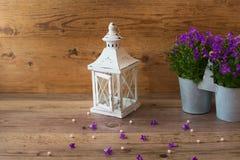 Λαμπτήρας και campanula κηροπηγίων σχεδίου Στοκ Εικόνα