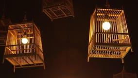Λαμπτήρας κλουβιών πουλιών απόθεμα βίντεο
