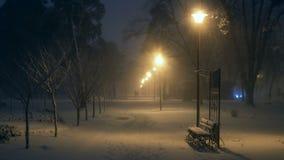 Λαμπτήρας νύχτας πάρκων χιονοπτώσεων απόθεμα βίντεο