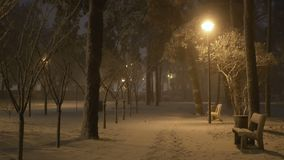 Λαμπτήρας νύχτας πάρκων χιονοπτώσεων φιλμ μικρού μήκους