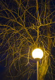 Λαμπτήρας νύχτας Στοκ Εικόνες