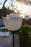 Λαμπτήρας λουλουδιών κήπων στοκ φωτογραφία