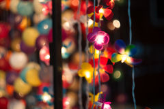 Λαμπτήρας λουλουδιών Στοκ φωτογραφία με δικαίωμα ελεύθερης χρήσης