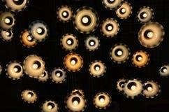 Λαμπτήρες αστεριών Στοκ Φωτογραφία