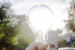 Λαμπτήρες ινών βολφραμίου που φωτίζονται από το φως του ήλιου την ιδέα στοκ φωτογραφία με δικαίωμα ελεύθερης χρήσης