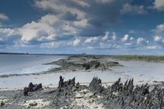 Λασπώδης ακτή και νεφελώδης ουρανός Στοκ Εικόνες