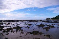 Λασπώδεις βράχοι Στοκ φωτογραφία με δικαίωμα ελεύθερης χρήσης