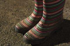 Λασπώδεις μπότες του Ουέλλινγκτον Στοκ Εικόνα