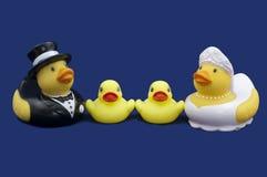 Λαστιχένιος νύφη παπιών και νεόνυμφος και δύο νεοσσοί Στοκ φωτογραφία με δικαίωμα ελεύθερης χρήσης