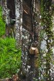 Λαστιχένιο τρύπημα Στοκ φωτογραφία με δικαίωμα ελεύθερης χρήσης
