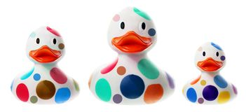 Λαστιχένιο Duckies Στοκ Φωτογραφία