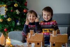 Λατρευτά προσχολικά παιδιά, αδελφοί αγοριών, που διακοσμούν το gingerbrea στοκ φωτογραφίες
