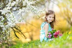 Λατρευτές τουλίπες εκμετάλλευσης μικρών κοριτσιών για τη μητέρα της στον κήπο κερασιών Στοκ Εικόνα