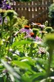 Λατρευτός κήπος το πρωί Στοκ εικόνα με δικαίωμα ελεύθερης χρήσης