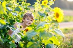 Λατρευτός λίγο ξανθό αγόρι παιδιών στον τομέα θερινών ηλίανθων υπαίθρια Στοκ φωτογραφία με δικαίωμα ελεύθερης χρήσης