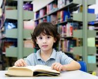 Λατρευτός λίγο παιδί, αγόρι, που κάθεται σε μια βιβλιοθήκη, που διαβάζει τα βιβλία στοκ εικόνα με δικαίωμα ελεύθερης χρήσης