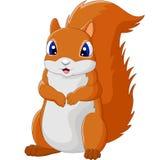 Λατρευτός σκίουρος κινούμενων σχεδίων Στοκ εικόνες με δικαίωμα ελεύθερης χρήσης
