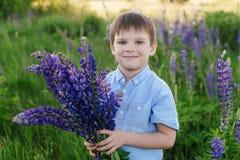 Λατρευτό αγόρι σε μια μπλε μπλούζα με μια ανθοδέσμη των λούπινων σε ένα λιβάδι στοκ φωτογραφίες με δικαίωμα ελεύθερης χρήσης