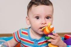 Λατρευτό εξάμηνο παλαιό παιδί που μασά ένα παιχνίδι Οδοντοφυΐα μωρών Στοκ φωτογραφίες με δικαίωμα ελεύθερης χρήσης