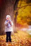 Λατρευτό ευτυχές κοριτσάκι που έχει τη διασκέδαση στο πάρκο φθινοπώρου, που θαυμάζει τα πεσμένα φύλλα Στοκ Εικόνες