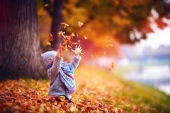 Λατρευτό ευτυχές κοριτσάκι που πιάνει τα πεσμένα φύλλα, που παίζουν στο πάρκο φθινοπώρου Στοκ Εικόνες
