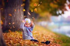 Λατρευτό ευτυχές κοριτσάκι που πιάνει τα πεσμένα φύλλα, που παίζουν στο πάρκο φθινοπώρου Στοκ φωτογραφίες με δικαίωμα ελεύθερης χρήσης