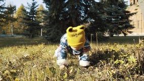 Λατρευτό κοριτσάκι που λαμβάνει τα πρώτα μέτρα του στο πάρκο μια όμορφη ημέρα φθινοπώρου απόθεμα βίντεο