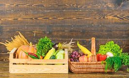 Λαχανικά από τον κήπο ή το αγρόκτημα στο ξύλινο υπόβαθρο Οργανικά λαχανικά συγκομιδών συγκομιδών φθινοπώρου Homegrown λαχανικά στοκ φωτογραφία με δικαίωμα ελεύθερης χρήσης