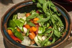 Λαχανικά για το μαγειρευμένο πιάτο στο δοχείο αργίλου Στοκ φωτογραφία με δικαίωμα ελεύθερης χρήσης