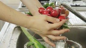 Λαχανικά γυναικών washin απόθεμα βίντεο