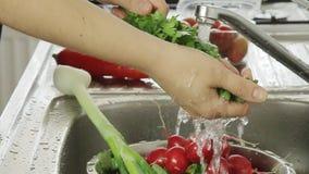 Λαχανικά γυναικών washin φιλμ μικρού μήκους