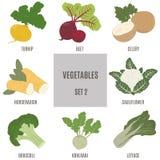 Λαχανικά 2 διακοσμήσεις που τίθεν Στοκ Εικόνες