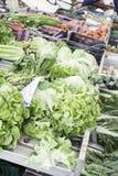 Λαχανικά και γεωργία Στοκ Φωτογραφία